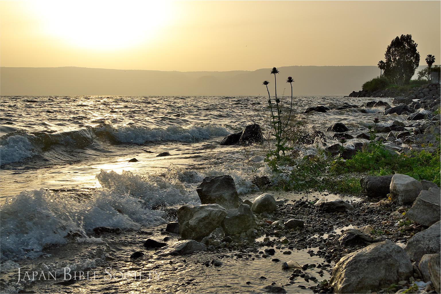 ガリラヤ湖畔の朝