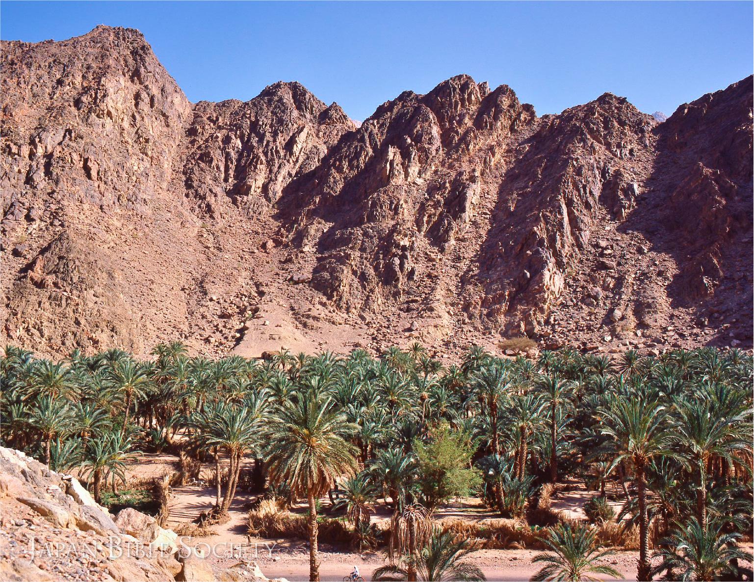 レフィディム(エジプト)