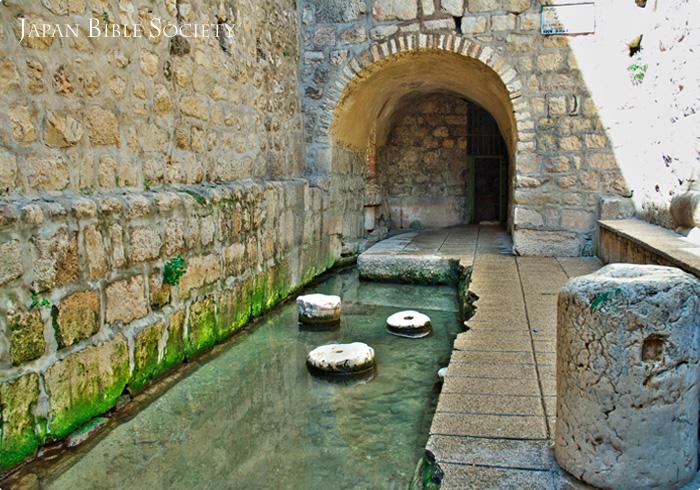 シロアムの池